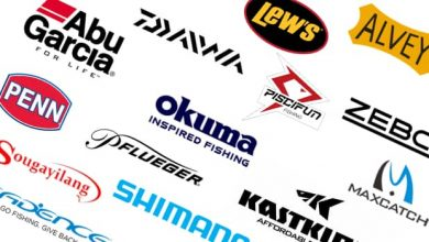 Photo of BEST FISHING REELS BRANDS